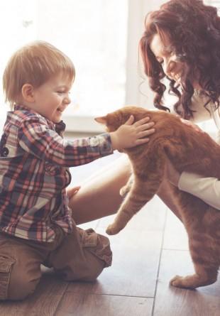 Animalele de companie îți fac viața mai frumoasă și mai sănătoasă!