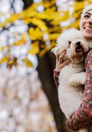 Cum îți protejezi câinele de frig?
